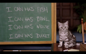 Whiskas Kitten College 2