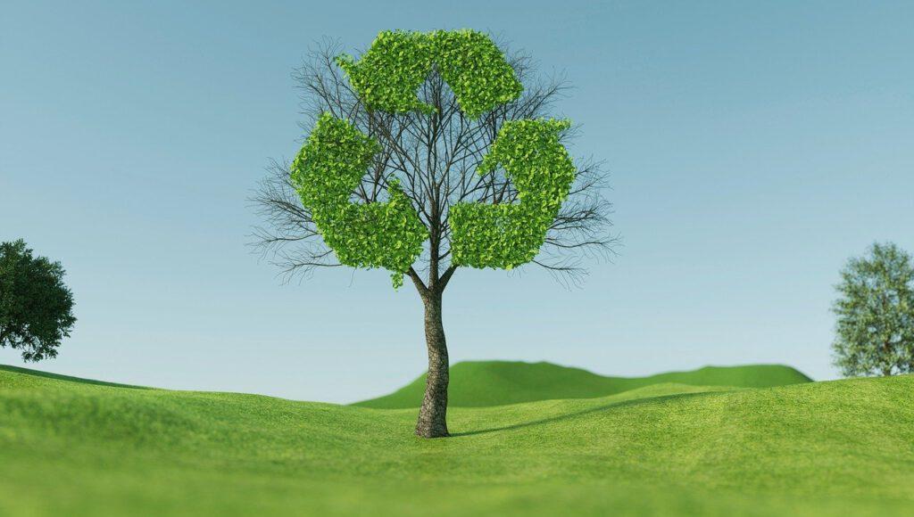 พัฒนาสู่ความยั่งยืน (Sustainable Development)